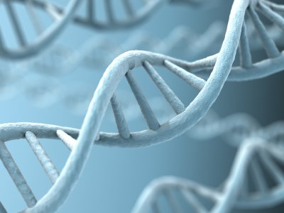 ADHD, DNA and genetics